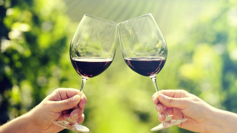 Introduction to wine tours and wineries in Canada